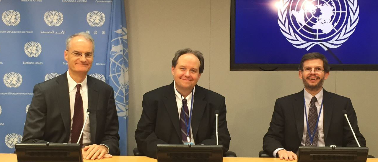 Faculty at the United Nations