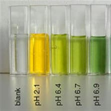 Chemistry Beakers for Testing PH
