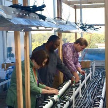 Daniel Piatek, Ph.D. candidate Sauvelson Auguste, and Professor Mary Berger working on growing their plants.