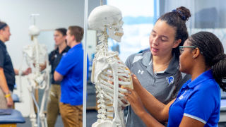 Athletic Trainers examining skeleton