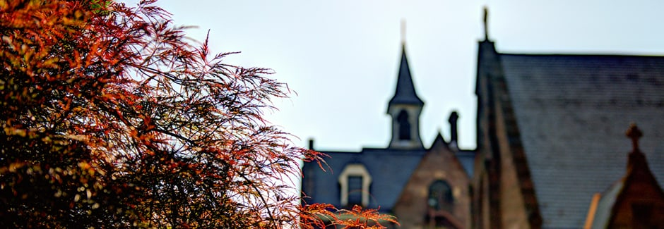 Seton Hall Campus Building tops and Tree with red foliage